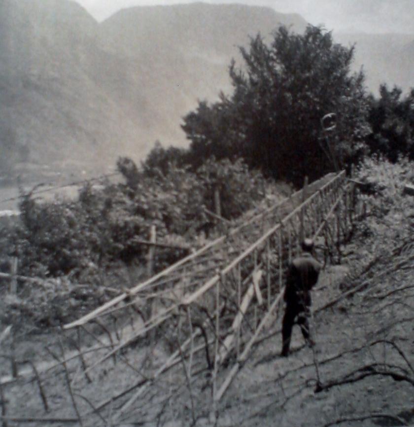 feuer_nacht_giugno_1961
